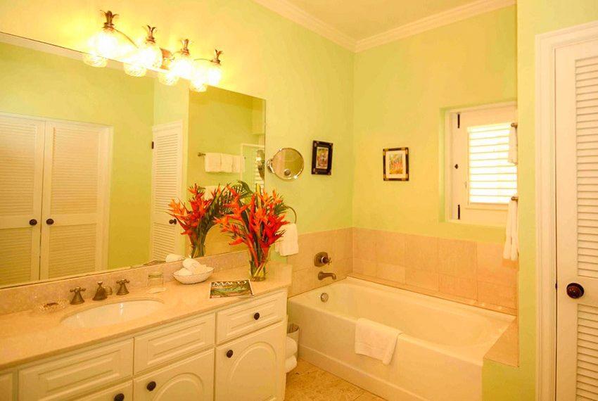 palm grove villa island cove nevis en suite badkamer wereldwijdleven