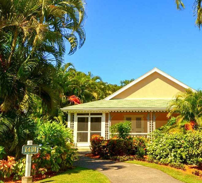 palm grove villa island cove nevis ingang wereldwijdleven