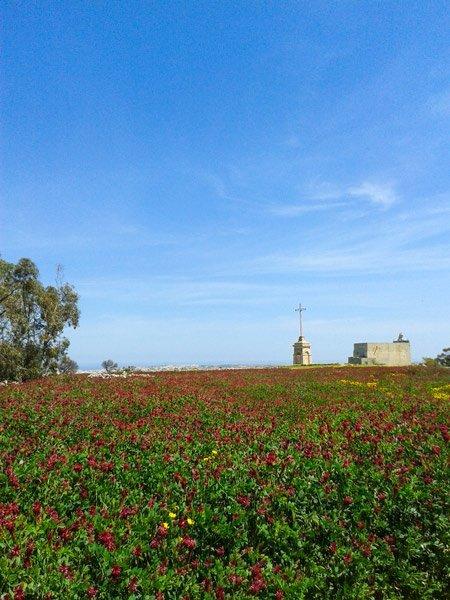 klimaat in malta april wereldwijd leven