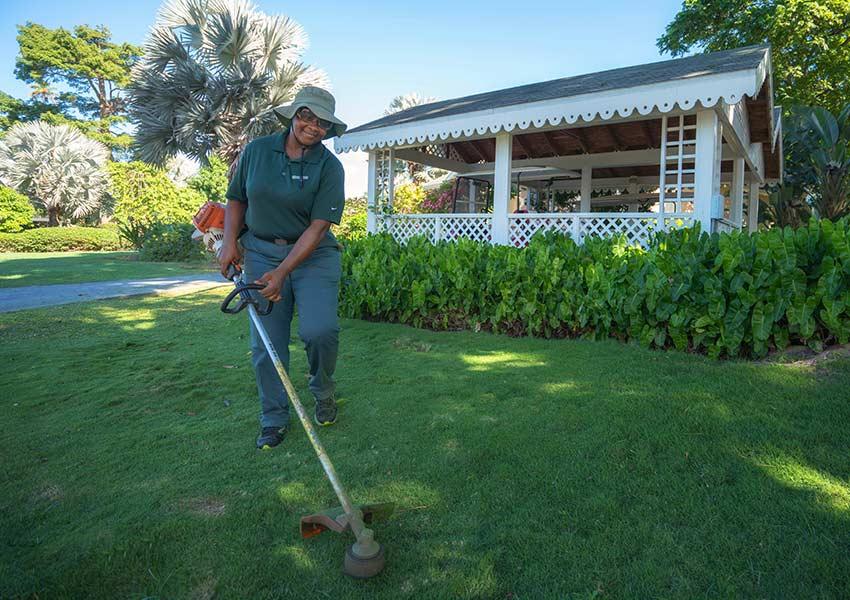 tuinieren professionele service four seasons vastgoed nevis wereldwijdleven