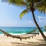 beleggingspand kopen op exotisch eiland wereldwijd leven