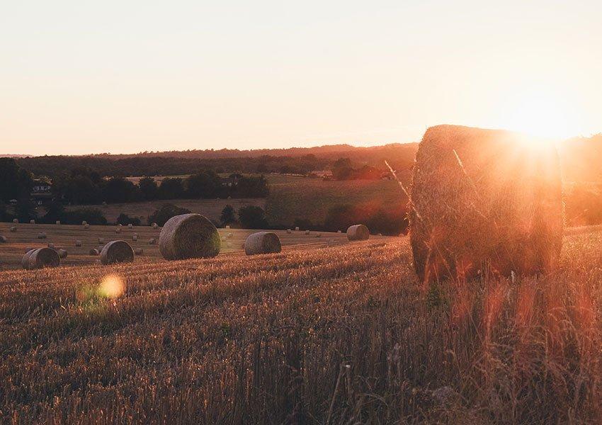 veld met strobalen bij zonsondergang op verkenning in frankrijk zoektocht vastgoed