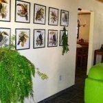 living muurversiering en varens als planten in villa