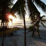 tuin links ochtend prachtig zonlicht ochtendwandeling op strand Brazilië