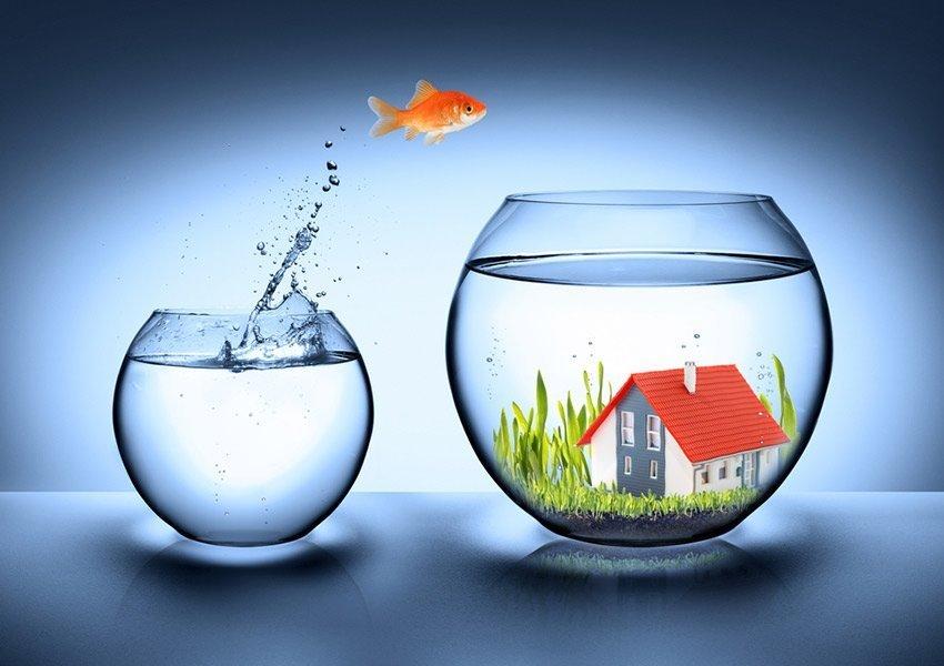 vlaamse sleutel op de deur aanbieding te koop als zorgeloze vastgoedbelegging met zekere huurinkomsten