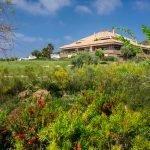 clubhuis golf resort costa del sol vlakbij appartementen te koop estepona málaga