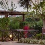 grote tuinen met wandelpaden in en rond het resort met appartementen te koop costa del sol estepona málaga