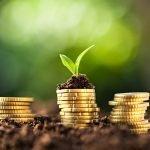 sparen of geld investeren wat is het belangrijkste voor particulier
